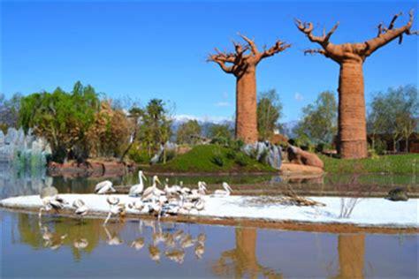 zoom cumiana prezzi ingresso bioparco zoom torino parco naturalistico cumiana torino