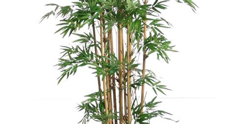 fiori e piante finte piante e fiori artificiali piante finte fiori finti e