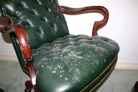 Mold On Leather Sofa by Remove All Stains How To Remove Mold From Leather