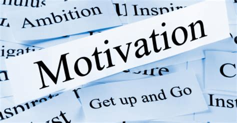 5 Key Motivators within the Workplace