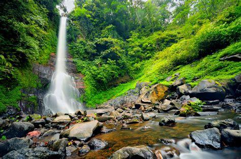 gitgit waterfall bali sun tours