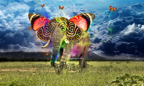 abstract elephant wallpaper hd abstract elephant by natosaurusrex on deviantart