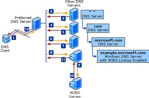 Dns Server Address Lookup Dns Processes And Interactions
