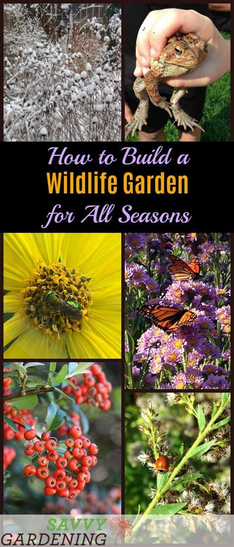 wildlife garden project   seasons   plants