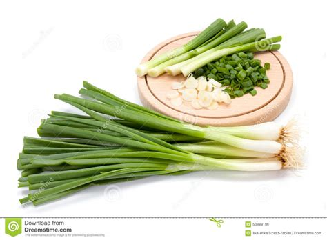 cut green onion royalty free stock photography cartoondealer com 52465391