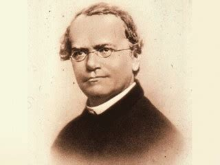biography gregor mendel gregor mendel biography birth date birth place and pictures