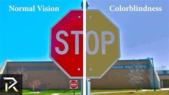 what to blind see 10 ways color blind see the world