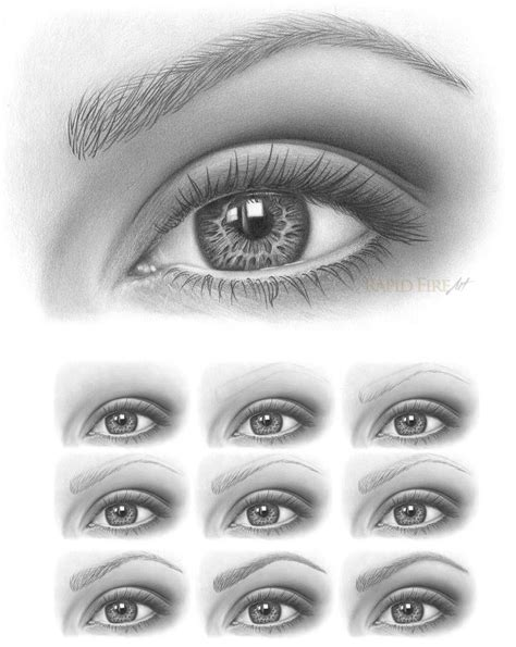 Drawing Eyebrows by Best 25 Drawing Eyebrows Ideas On Drawings Of
