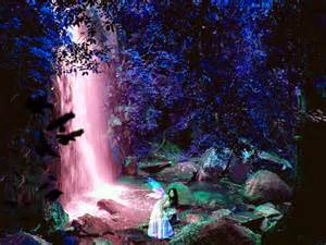 Cinderella Wall Mural forest fairy nature fantasy abstract r13z