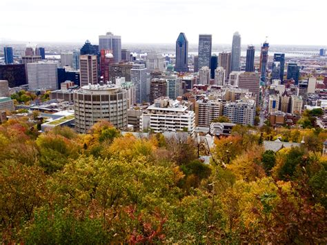 where does the st go 15 things to do in montreal if you re visiting for the