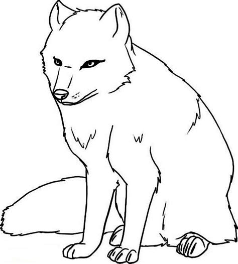 coloring page arctic wolf arctic fox coloring page free book arctic animals