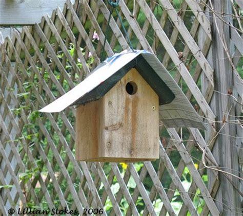 stokes birding blog hot weather help for birds 10 tips