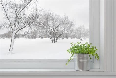winter herb garden outdoor beat the winter doldrums with indoor herbs the grid news