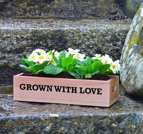 Personalised Planters by Personalised Mini Wooden Planter By Plantabox