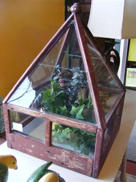 vintage terrarium green house table top seed starter