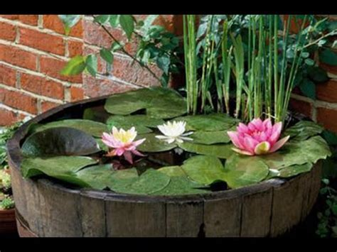 easy water garden   pond   pot youtube