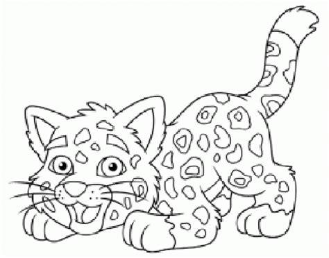 imagenes jaguar para colorear de jaguares para colorear imagui