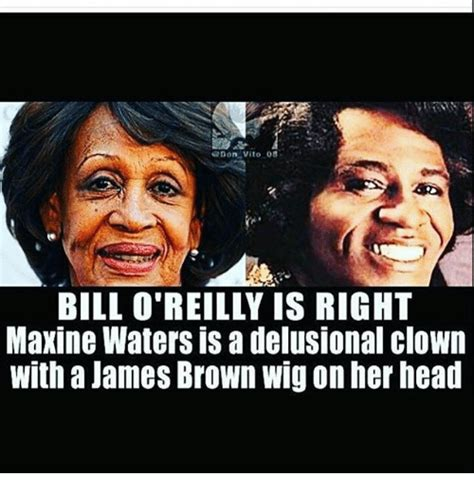 James Brown Meme - 25 best memes about don vito don vito memes