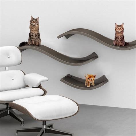 56 best cat wall shelves images on