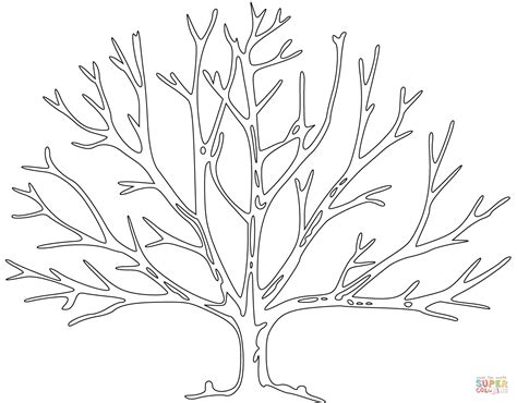 tree pattern without leaves coloring page tree bare tree outline coloring page coloring pages
