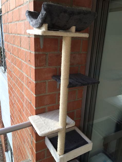 17 best images about gimnasio en casa on home 65 best images about gimnasios para gatos on