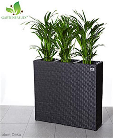 pflanzkübel metall raumteiler im garten bestseller shop f 252 r m 246 bel und