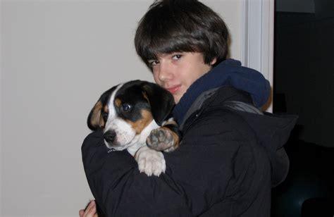 do dogs like hugs do dogs like hugs