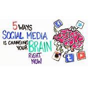 Comment Les R&233seaux Sociaux Changent Votre Cerveau  Brain