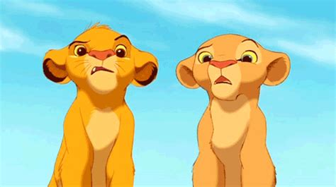the lion king stitch gif find share on giphy confused the lion king gif find share on giphy