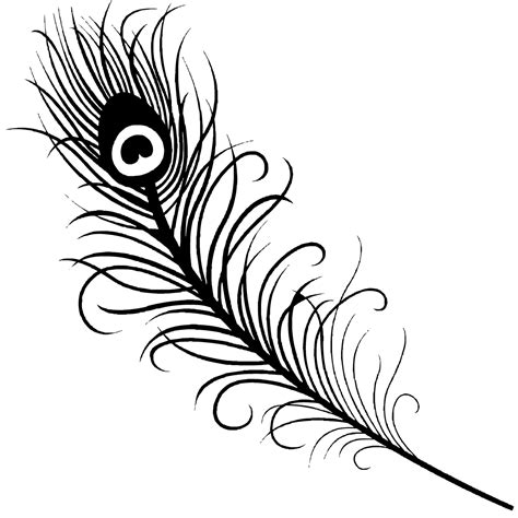 coloring pages of peacock feathers the gallery for gt peacock feather colouring pages