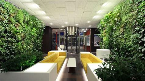 fresh modern house interior design garden toobe green that