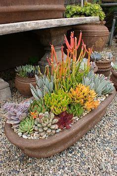 Cactus Planter Ideas by 1000 Ideas About Succulent Rock Garden On