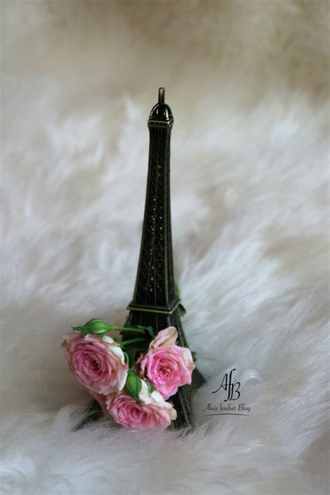 paris through a fashion eye von megan hess alnis fescher blog