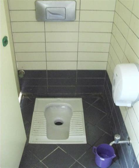 Commode Toilet Designs by Indian Toilet Design Layout Home Decor Renovation Ideas