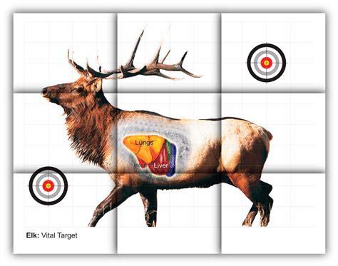printable animal archery targets elk vitals target free printable shooting targets