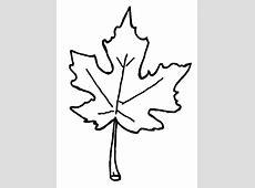 Autumn Leaves Coloring Pages   Free Images at Clker.com ... Oak Leaf Pictures Clip Art