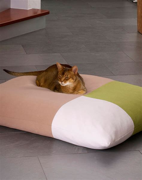 bed for cats divan orthopedic bed for large cats is an exclusive pet product