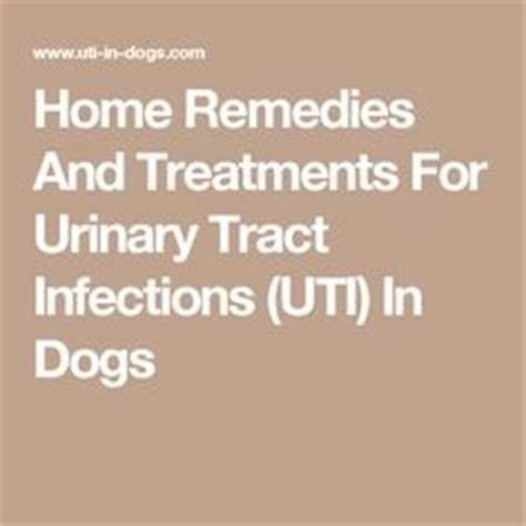 1000 images about urinary tract infections on