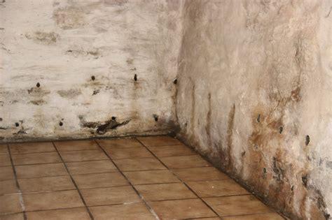 Lutter Contre Humidite Des Murs 2863 by Tache Humidit Mur Amazing Ces Solutions Permettent De