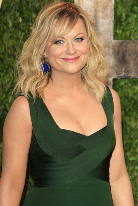 poehler hair color 7 best hair colour transformations hair
