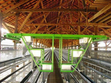 Info Keranjang Ayam tempat pakan ayam petelur otomatis jual peralatan