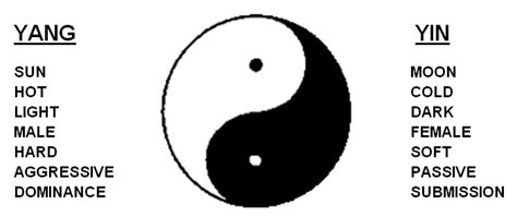 what does the yin yang symbolize the medicine is you how chinese medicine aids in self