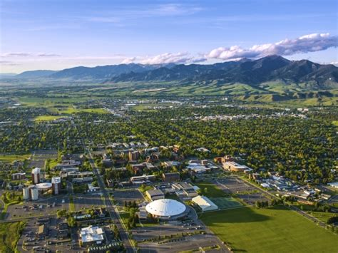 montana state pictures msu news montana state