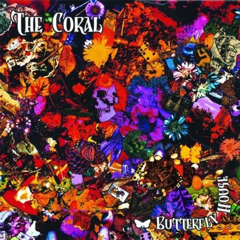 the coral house the coral butterfly house reviews album of the year