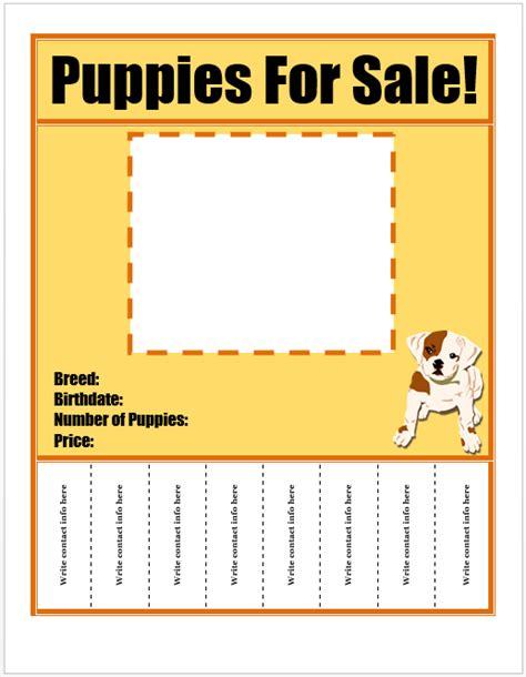 dog walker walking business flyer template business flyer