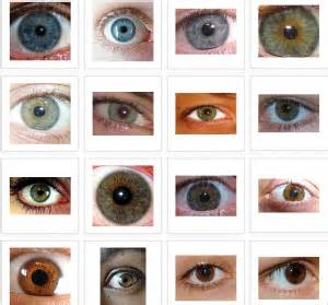 What do your eyes say about your personality i facts