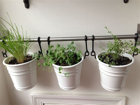 wall herb garden ikea ikea things bright and beautiful
