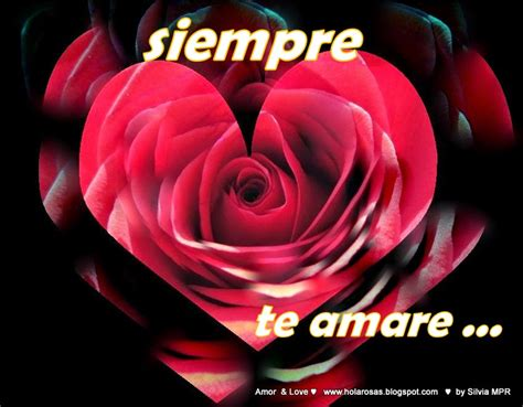 imagenes bellas de amor y corazones imagenes de amor con rosas y corazones imagenes de amor