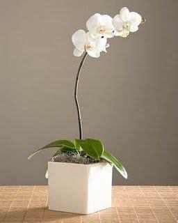 Vas Bunga One Pieces By Kjperabot best 25 orchid centerpieces ideas on
