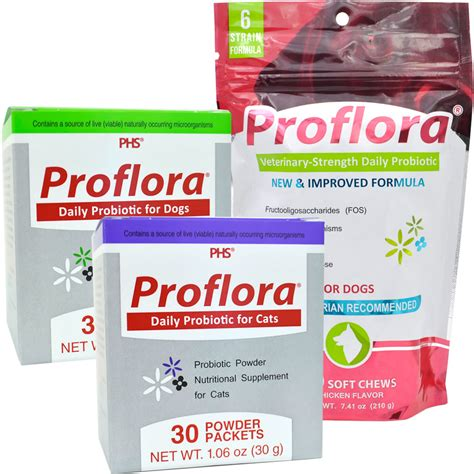 Probiotics And Stools by Gastrointestinal Issues In Pets Archives Vetrxdirect Blogvetrxdirect